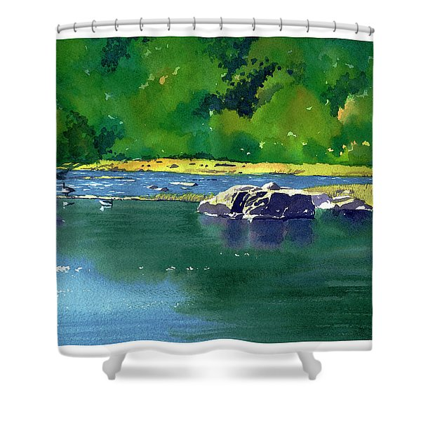 Geese On The Rappahannock Shower Curtain