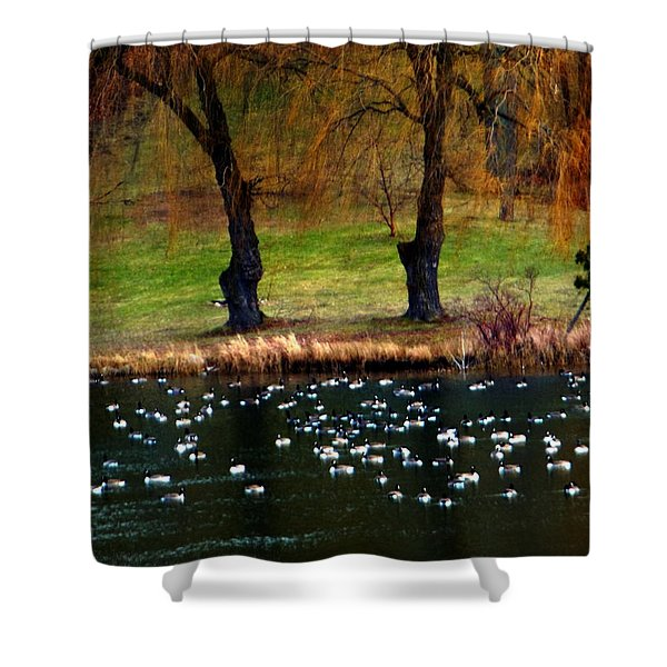 Geese Weeping Willows Shower Curtain