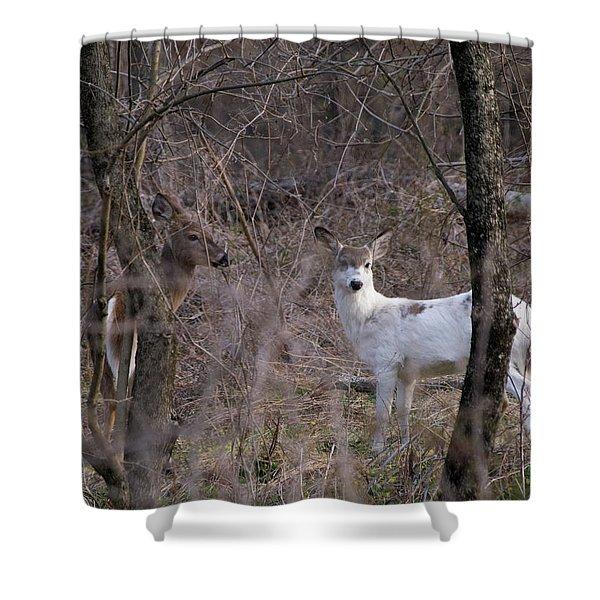 Genetic Mutant Deer Shower Curtain