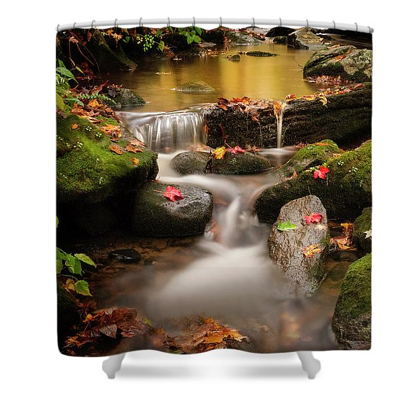 Gentle Cascades Of Autumn  Shower Curtain