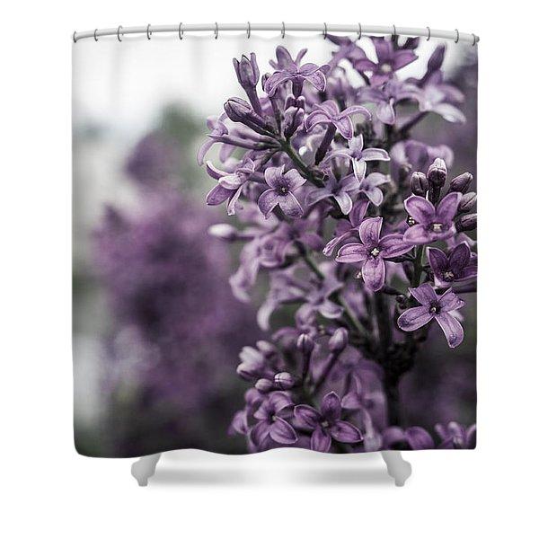 Gentle Spring Breeze Shower Curtain