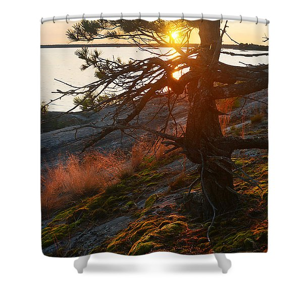 Georgian Bay Sunrise Wild Grass Shower Curtain