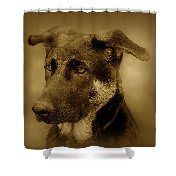 German Shepherd Pup Shower Curtain by Sandy Keeton