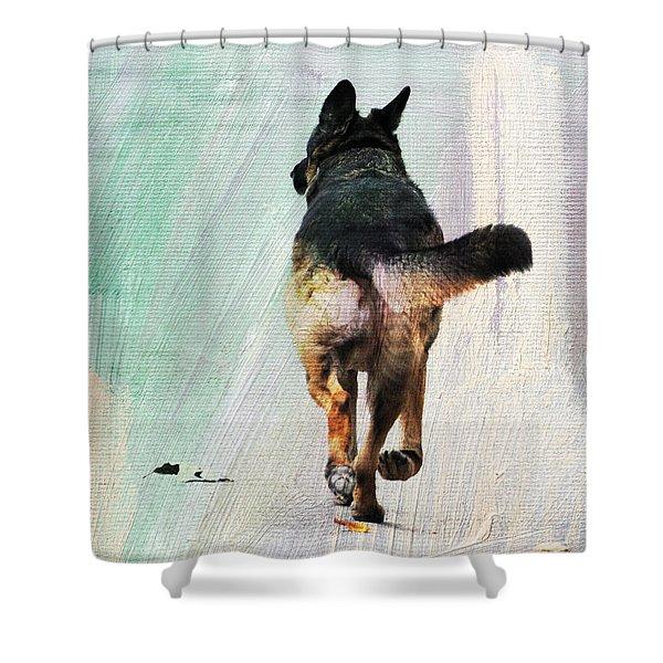 German Shepherd Taking A Walk Shower Curtain
