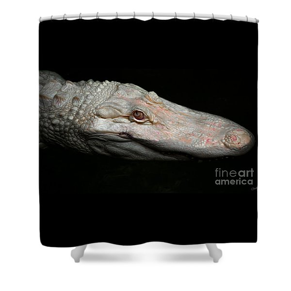 Ghost Of The Bayou Shower Curtain