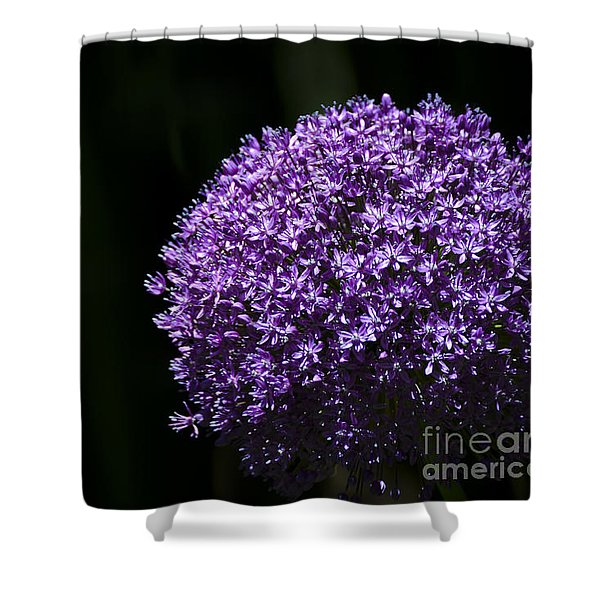 Shower Curtain featuring the photograph Giant Allium by Andrea Silies