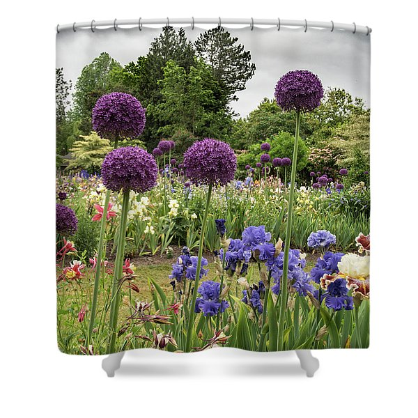Giant Allium Guards Shower Curtain