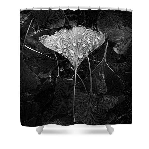 Ginkgo Shower Curtain