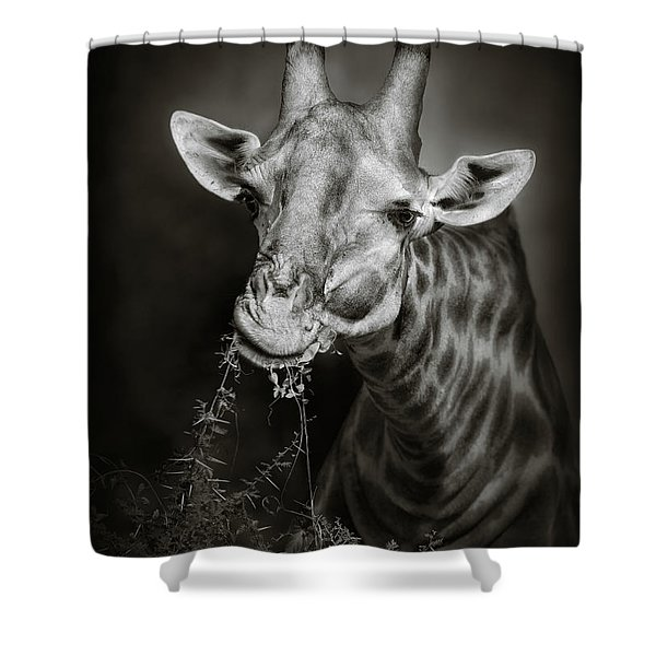 Giraffe Eating Shower Curtain
