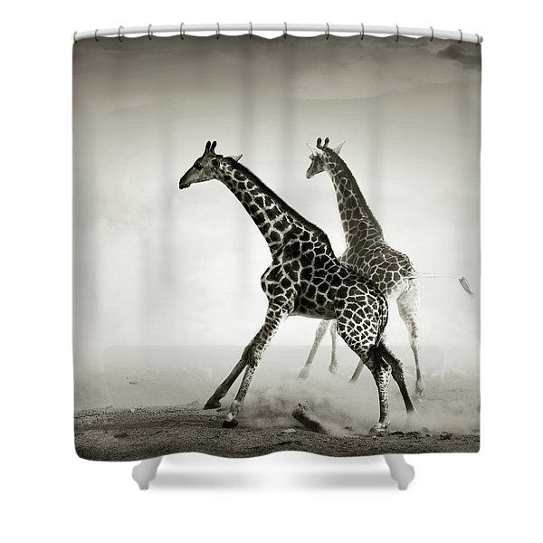 Giraffes Fleeing Shower Curtain