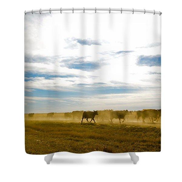 Git Along Shower Curtain