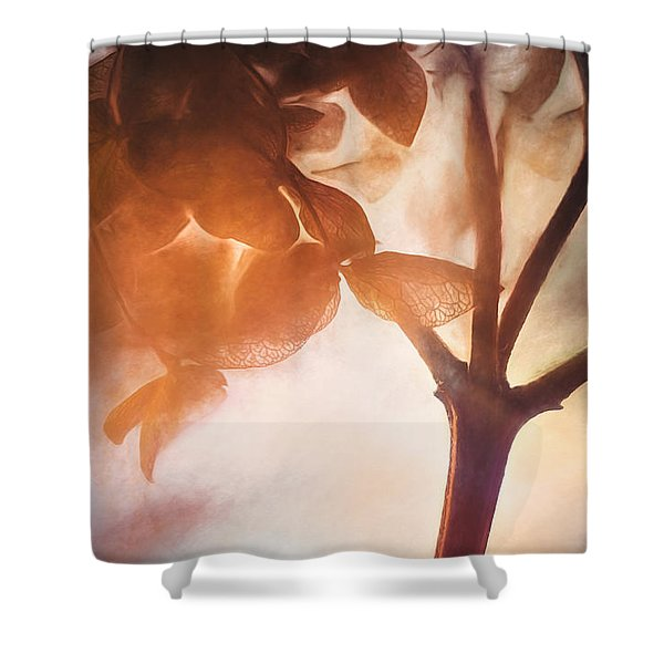 Give Thanks For The Light Shower Curtain