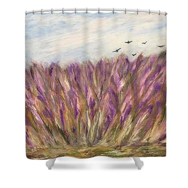 Gladiolus Field Shower Curtain