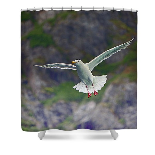 Glaucous-winged Gull Shower Curtain