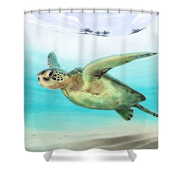 Gliding The Coastline Shower Curtain