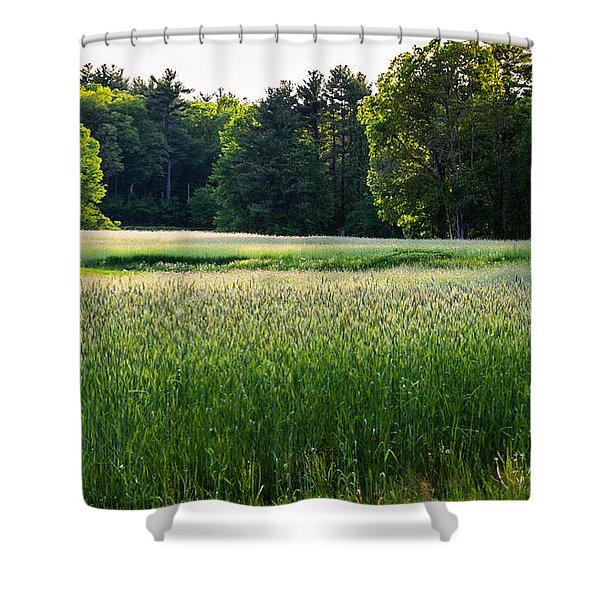 Glistening Green Shower Curtain