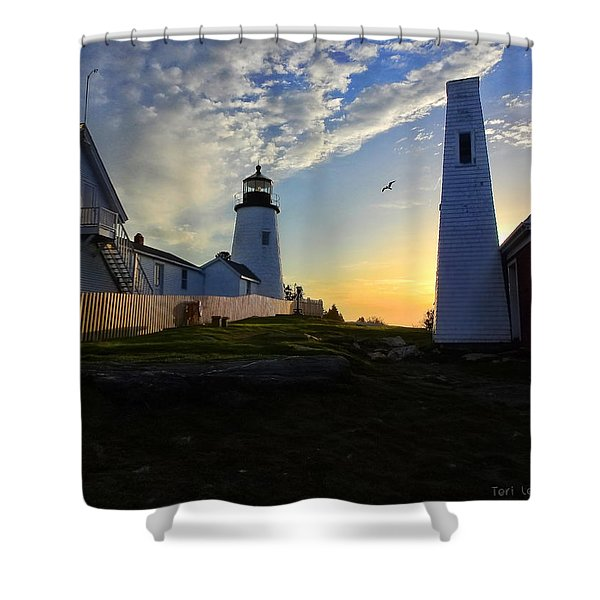 Glow Of Morning Shower Curtain