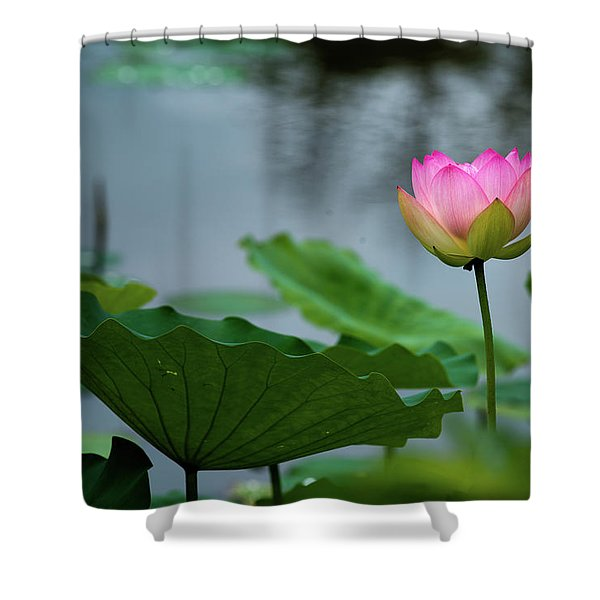 Glowing Lotus Lily Shower Curtain