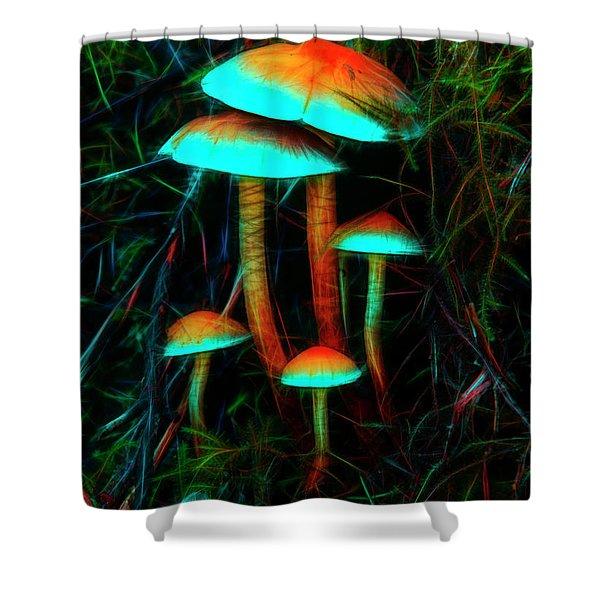 Glowing Mushrooms Shower Curtain