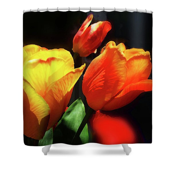 Glowing Tulips Red And Yellow Bouquet  Shower Curtain