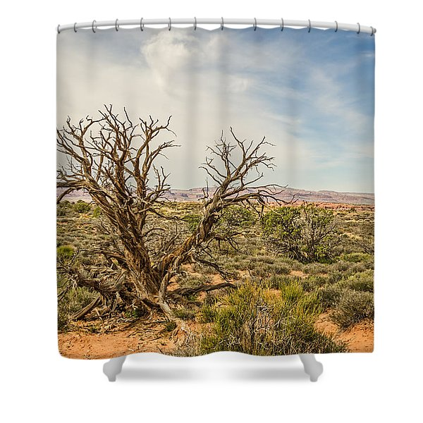 Gnarled Juniper Tree In Arches Shower Curtain