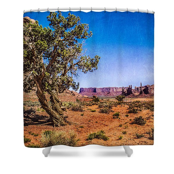 Gnarled Utah Juniper At Monument Vally Shower Curtain