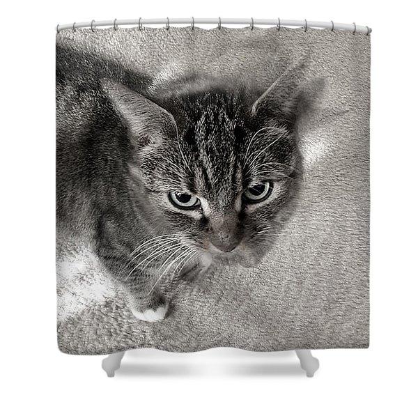 Go Tikki Shower Curtain