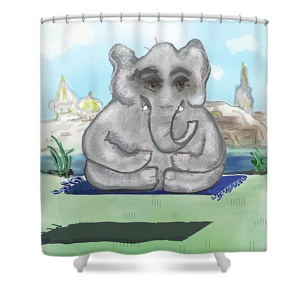 Go Zen, Baby Shower Curtain