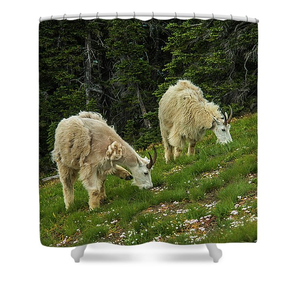Goat Garden Shower Curtain