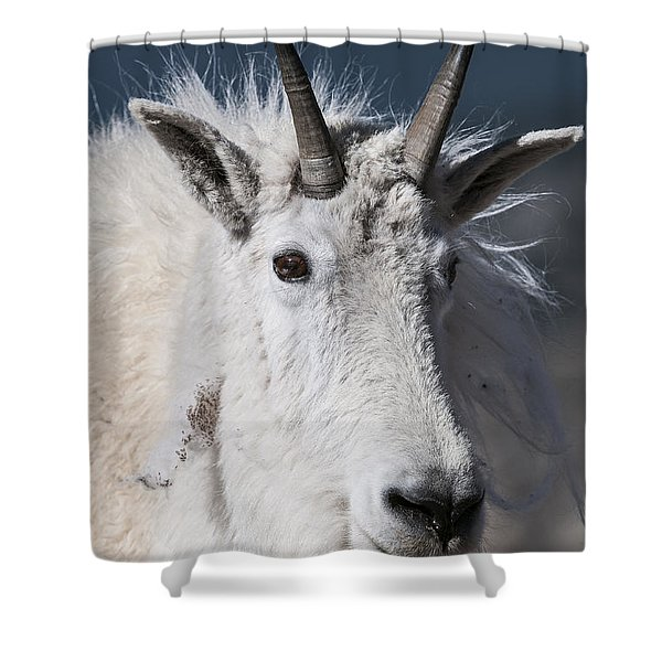 Goat Portrait Shower Curtain