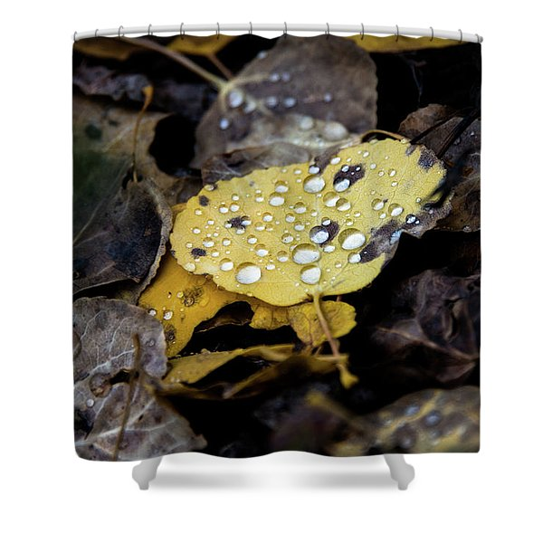 Gold And Diamons Shower Curtain
