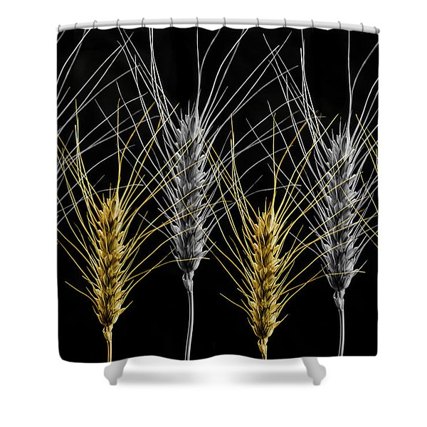 Gold And Silver Wheat Shower Curtain
