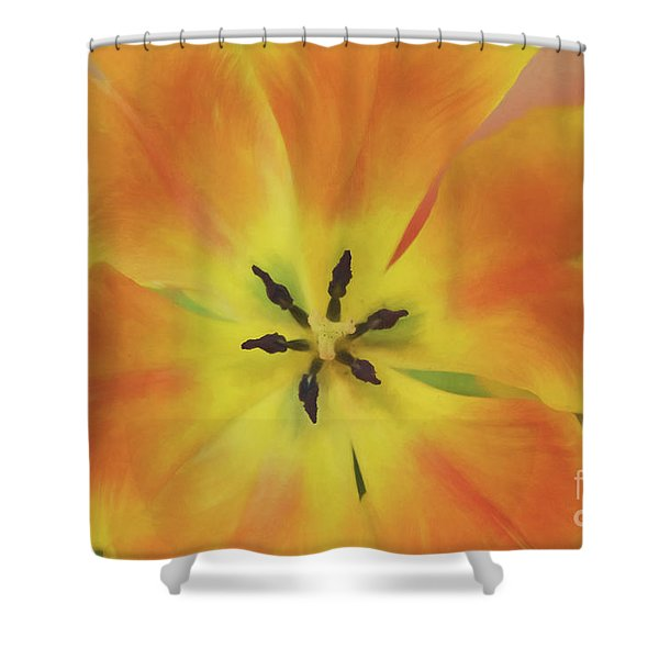 Gold Tulip Explosion Shower Curtain