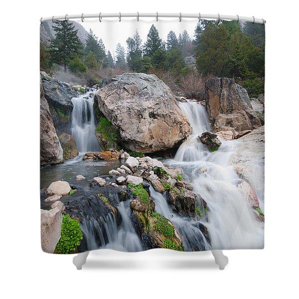 Goldbug Hot Springs Shower Curtain