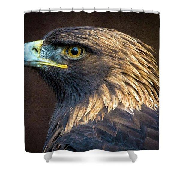 Golden Eagle 2 Shower Curtain