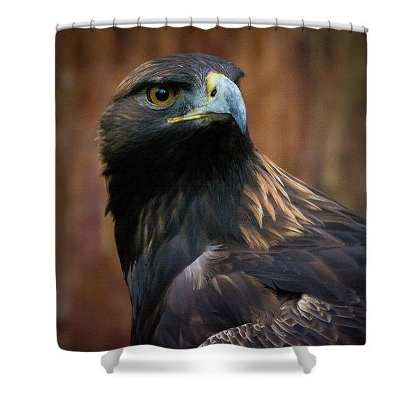 Golden Eagle 4 Shower Curtain