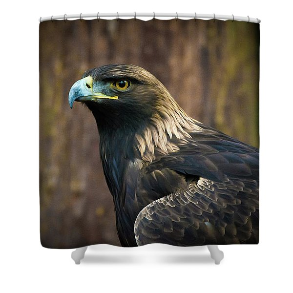 Golden Eagle 5 Shower Curtain