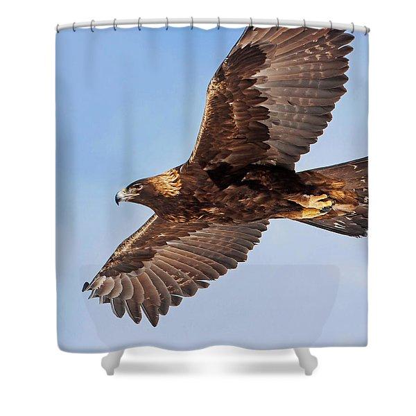 Golden Eagle Flight Shower Curtain