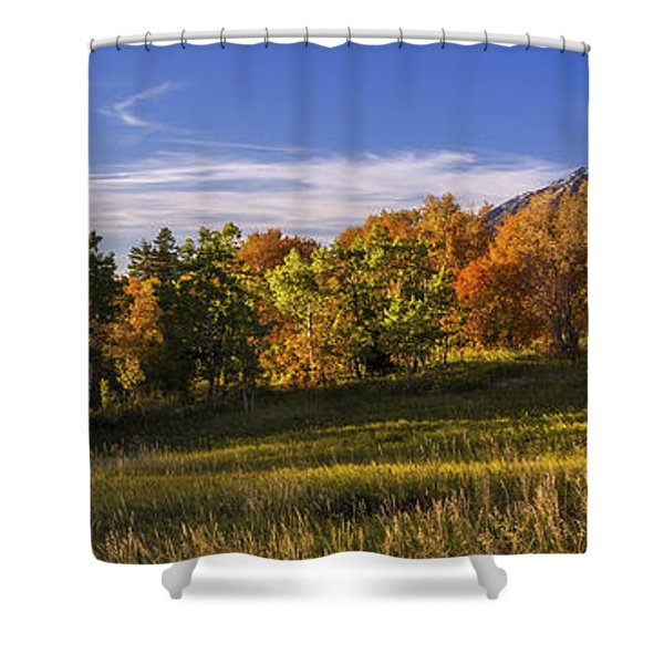 Golden Meadow Shower Curtain