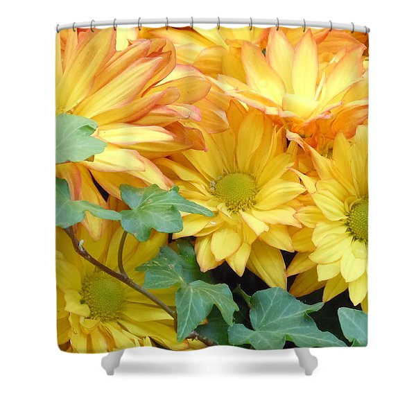 Golden Mums And Ivy Shower Curtain