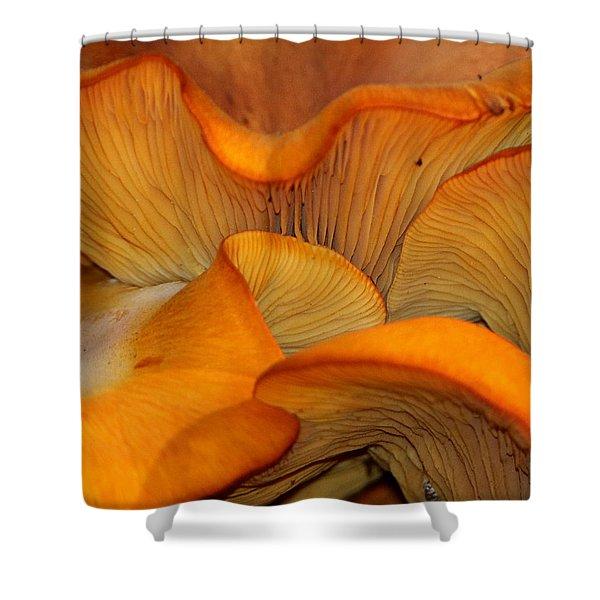 Golden Mushroom Abstract Shower Curtain