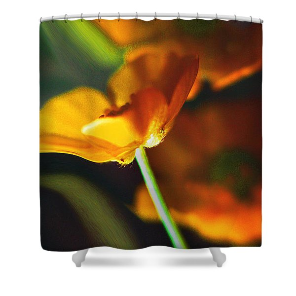 Golden Possibilities... Shower Curtain