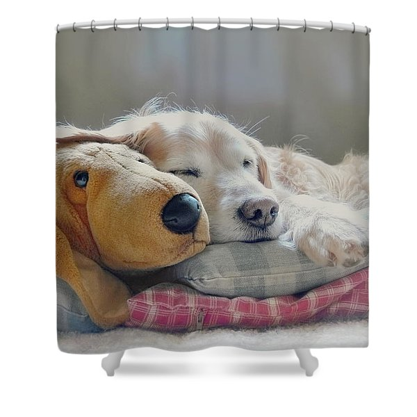 Golden Retriever Dog Sleeping With My Friend Shower Curtain