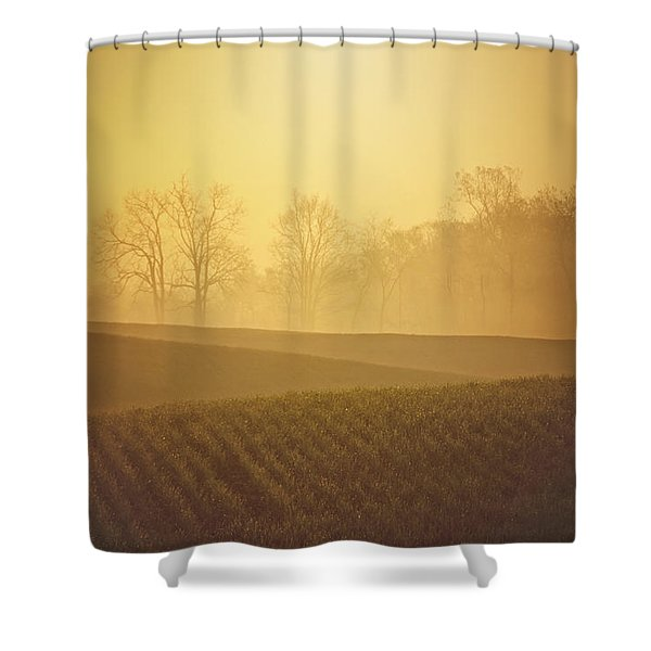 Golden Song Shower Curtain