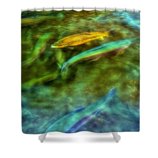 Golden Trout Shower Curtain