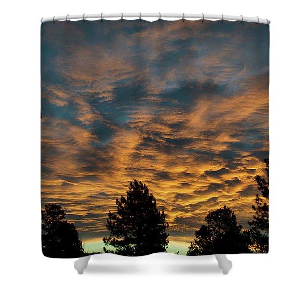 Golden Winter Morning Shower Curtain