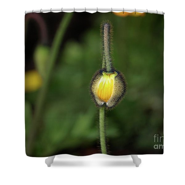 Goldengatefloral01 Shower Curtain