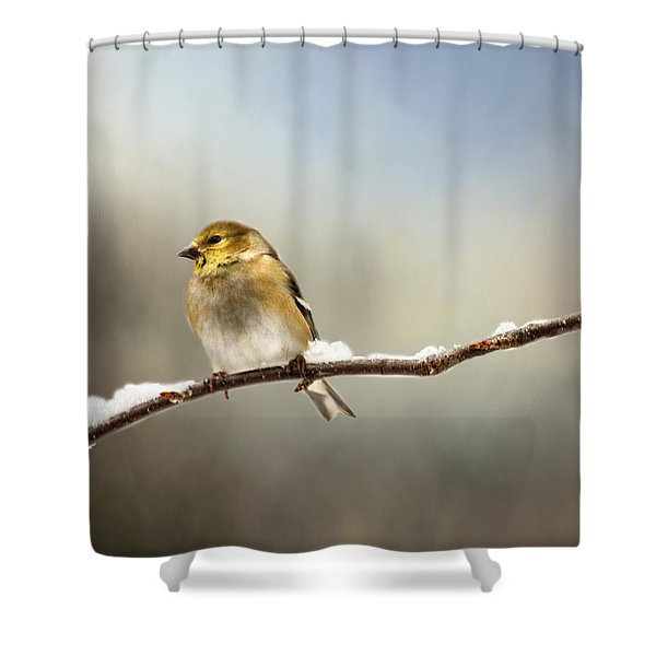 Goldfinch After A Spring Snow Storm Shower Curtain