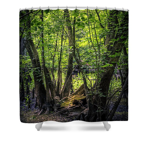 Gone And Forgotten Shower Curtain