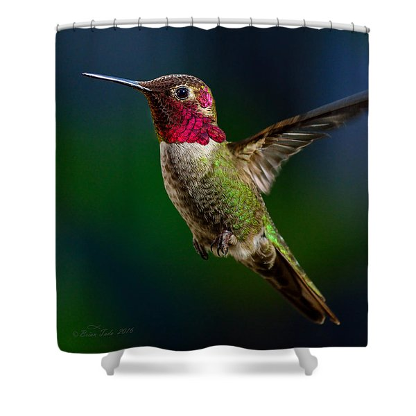 Good Friday Visitor Shower Curtain